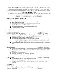 Professional Highlights Resume Examples Professional Highlights Resume Examples Examples of Resumes 1