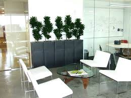 modern office plants. Cool Office Plants With No Windows For Desk India . Modern