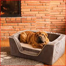 luxury dog bunk beds astonishing luxury square dog bed with memory foam by snoozer pet products