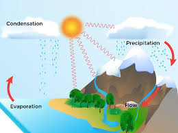 Flow Chart On Water Cycle Water Cycle