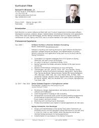 Example Cv Resume 80 Images 11 Curriculum Vitae Examples For