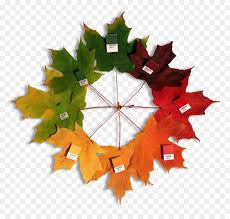 Fall Leaf Color Chart Christmas Leaf