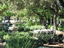 landscape garden center landscape garden center and mulligan landscape garden center inc the greatest garden landscape