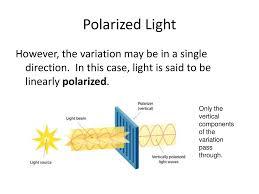 Polarization Of Light Physics Ppt The Polarization Of Light Ppt Download