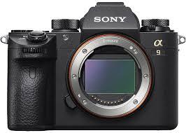 Sony Alpha Comparison Chart Sony Mirrorless Camera Guide Sonyalphalab