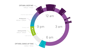 Find Your Own Circadian Rhythm Track Your Internal Clock