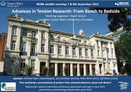 advances in tendon research from bench to bedside british advances in tendon research from bench to bedside