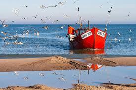 Znalezione obrazy dla zapytania morze