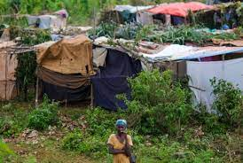 Haiti's hunger crisis bites deeper ...