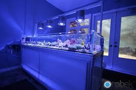 ada 60 f ai hydra mp10 aquaria aquariums reef tanks and reef aquascaping