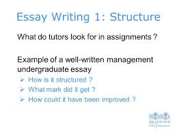 essay writing structure what do tutors look for in assignments 1 essay writing