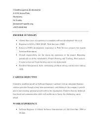 Resume Profile Custom Best Resume Profile Summary