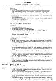 Change Management Analyst Sample Resume Analyst Change Management Resume Samples Velvet Jobs 1