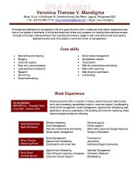 Virtual Assistant Resume Example