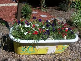from bath tub to garden tub this creative gardener has created a colourful feature planter