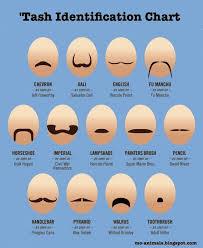 Mustache Styles Chart Mo Animals Moustache Styles Handy Identification Chart