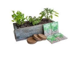 indoor herb garden kit with reclaimed