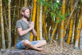 bamboo garden yoga. Perfect Yoga Bamboo Garden Yoga 17 Best Images About On Pinterest To G