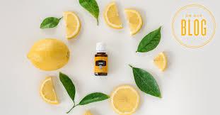 21 <b>Lemon Essential Oil</b> Uses | Young Living Blog