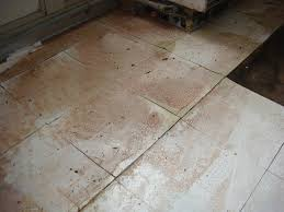 covering asbestos floor tiles realistic asbestos floor tile sealer