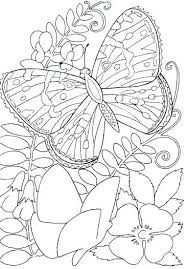 flower and butterfly coloring pages. Simple And Pictures Of Flowers And Butterflies To Color Butterfly Sheets  Inspirational Coloring Pages  With Flower And Butterfly Coloring Pages