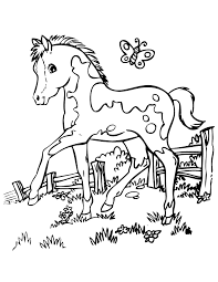 Small Picture Horse coloring pages with butterfly ColoringStar