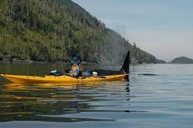 Orca Kayak Kayaking Kayak Trip Sea Kayaking
