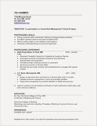 Internal Proposal Example Inspirational Resume Examples Grapher