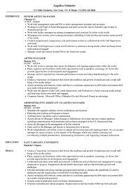 Artist Manager Resume Job Description Artist Manager Resume Samples Velvet Jobs