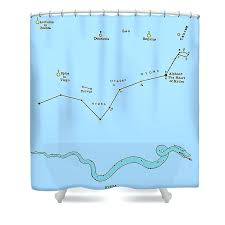 neon cancer constellation shower curtain by urban outfitters