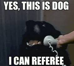 NFL Replacement Ref Memes Photo