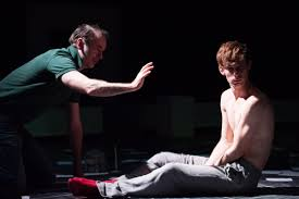 structure and development in mark haddon s the curious incident structure and development in mark haddon s the curious incident of the dog in the night time angel daniel matos ph d