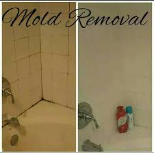 bathroom mold removal products. How To: Mold Removal, Remove Calcium Build Up, Hard Water Stains On Bathroom Removal Products E
