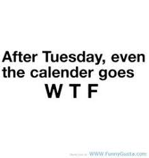 Humor Quotes on Pinterest | Hilarious Sayings, Animal Jokes and ... via Relatably.com