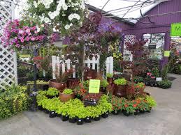 my garden nursery wa