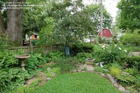Small Picture Garden Design Help with small shade garden please 1 by chrish