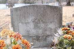 MATTHEWS, LOTTYE - Lincoln County, Arkansas   LOTTYE MATTHEWS - Arkansas  Gravestone Photos