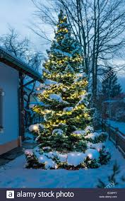 christmas trees decorated outside snow. Contemporary Decorated Festively Decorated Christmas Fir Tree Outside In The Snow Snow Covered  Branches Warm Lights For Trees Decorated Outside