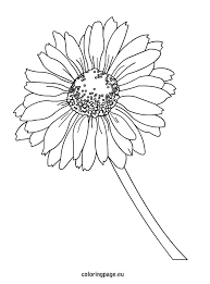Small Picture Daisy coloring page