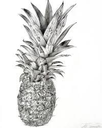 realistic pineapple drawing. how to draw a pineapple | drawing by ~rollingboxes on deviantart realistic