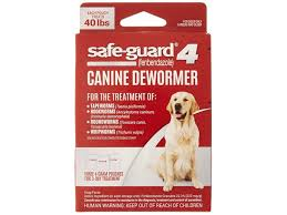 The Best Dog Dewormer You Can Buy Business Insider