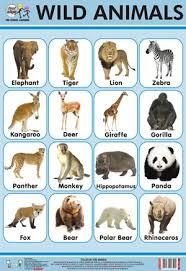 wild animals chart. Plain Animals Wild Animals Chart To U