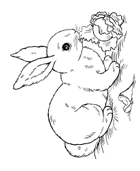 Small Picture 25 unique Bunny coloring pages ideas on Pinterest Easter
