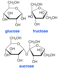 glucose fructose and sucrose shown in ring form