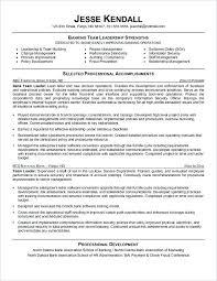 Teller Resume Samples Entry Level Bank Teller Resume Bank Teller