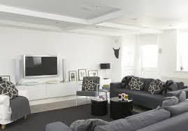 Modern Gray Living Room Gray Contemporary Modern Family Room Living Room Design Ideas