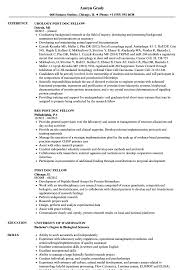 Resume Sample Doc Post Doc Fellow Resume Samples Velvet Jobs 83