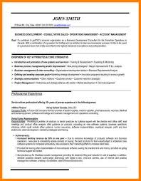 8 Example Resume For Sales Position Martini Pink