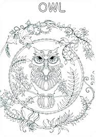 Coloring Sheets Of Owls Animal Free Online Coloring Pages Owls