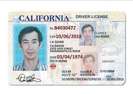 Id License Drivers 10 Template California Templates